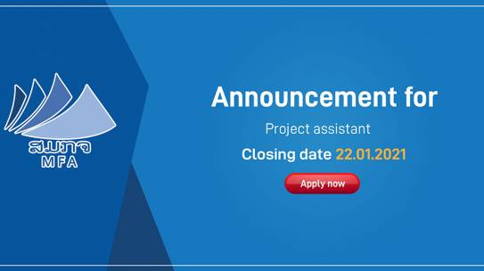 Announcement for Project assistant